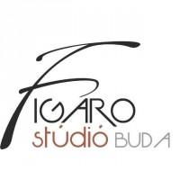 Figaro Studio Buda - Fodrászat, Kozmetika, Szempilla-hosszabbítás, Wax urak